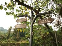 2度目の修道院 愉景灣から神樂院を経由して梅窩へ - 香港*芝麻緑豆