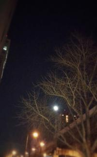 生理の周期は月のリズム - 和合一致
