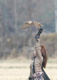 スカイトライアル - 今日も鳥撮り