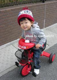 三輪車デビュー - nyaokoさんちの家族時間