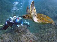 女子3人、初めての八丈島へ(^^) - 八丈島ダイビングサービス カナロアへようこそ!