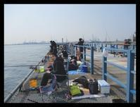 本牧海釣り施設 - ひだまり●●●陽のあたる場所みつけました