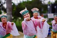 2016第13回赤穂でえしょん祭りその13(八琴栾) - ヒロパンの天空ウォーカー