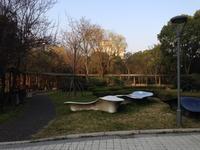 2017年3月の上海旅 〜太極拳の体験と書画教室の見学〜 - ナリナリの好きな仁寺洞