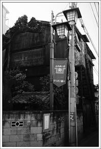 千住散歩 -568 - Camellia-shige Gallery 2