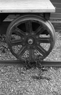 地方都市 - Just Leica Woman - Leica rolling stoneはよく見かけるので