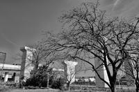 横浜北西線 - Photo & Shot