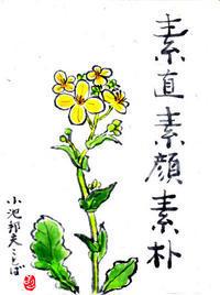 2017年3月 花水木絵手紙教室 ことば集より ♪♪ - NONKOの絵手紙便り