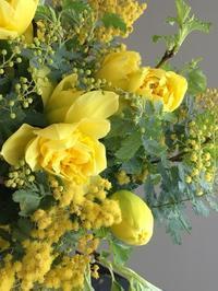 Jaune mimosa *ミモザノ黄色のbouquet* - Groseille グロゼイユ~四季のお庭とぼちぼちお花活動~