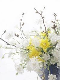 チューリップ相関図(笑) - お花に囲まれて