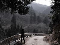 久々に奥多摩方面へ - 空のむこうに ~自転車徒然 ほんのりと~