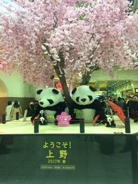 ザ・最新☆ - 上野 アメ横 ウェスタン&レザーショップ 石原商店