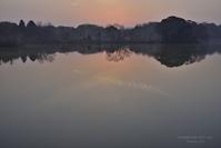 穏やかな朝 @ 水上池 - 東大寺が大好き