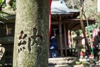 お祈り散歩1:鎌倉 佐助稲荷神社 - Ryoの横濱Life Timeline