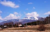 ららら・・・春分の日♪ - 浅間山眺めてほのぼのlife~花だより♪
