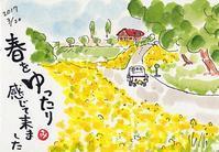 菜の花 - きゅうママの絵手紙の小部屋