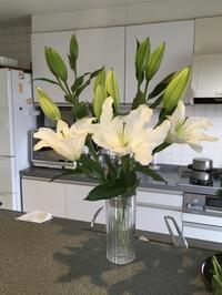 久しぶりにお花を買った - My style
