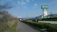 3月4日 琵琶湖畔ポタリング - 服部産業株式会社サイクリング部(2冊目)