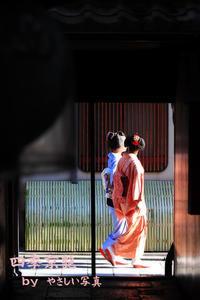 四季京艶 花街 --Kyoto Four Seasons-- Kyoto hanamachi - 四季京艶