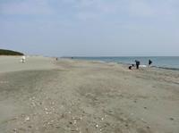 春の渚 - 今日も渚で日が暮れて