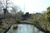向島百花園に春の訪れ(東京都墨田区) - 旅プラスの日記