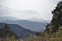 山のこと*高尾山 - 小皿ひとさら