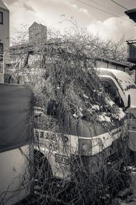 自然解凍を待つ赤帽軽トラ - Film&Gasoline