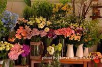 あなたの好きなお花屋さんになりたい。 - 花色~あなたの好きなお花屋さんになりたい~