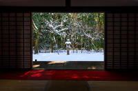 高桐院・雪景色 - 花景色-K.W.C. PhotoBlog