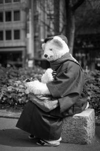 2017年3月23日 着物を着たシロクマさん - Silver Oblivion