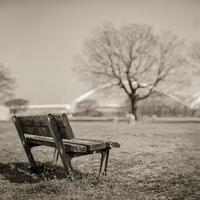 2017年3月28日 早春の公園でくつろぐ透明人間 - Silver Oblivion