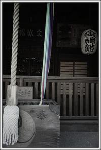 千住散歩 -570 - Camellia-shige Gallery 2