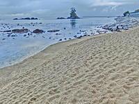 能登半島・雨晴海岸を歩く Part-2 - 多分駄文のオジサン旅日記