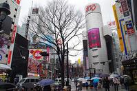 3月21日(火)今日の渋谷109前交差点 - でじたる渋谷NEWS
