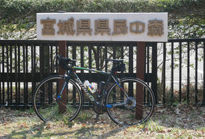 県森ライド - 風とバイクと俺と。