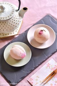春のお彼岸の桜おはぎと彼岸桜練りきり  Homemade Sakura Ohagi & Higanzakura Nerikiri - お茶の時間にしましょうか-キャロ&ローラのちいさなまいにち- Caroline & Laura's tea break