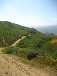 Walker canyon - My vintage life in LA