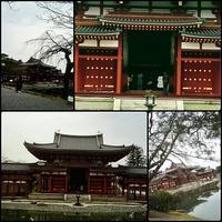 春の三連休は京都にて-その3 - 続マシュービ日記