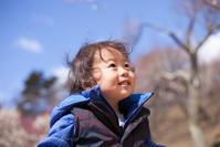 宝登山で梅のお花見 梅百花園 - Full of LIFE