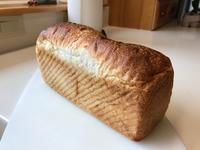 Syoku Pan (食パン) - ファルマウスミー