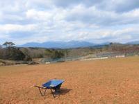 引続き圃場整備 モチ麦の御萩 - 葡萄と田舎時間