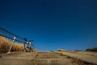 いよいよ春の真ん中へ - ゆるゆる自転車日記♪