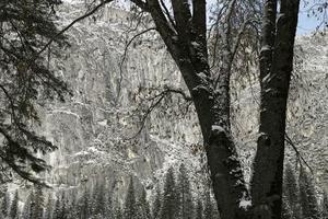 Yosemite雪10 - 風忘続々