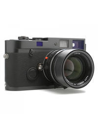 "Leica MP ""BLUE STAIN"" - view"