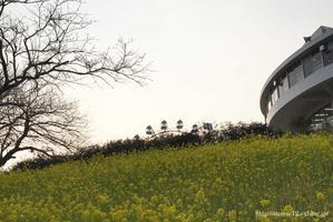 + 春の旅行2017 千葉・横須賀編 - 住まいの12の備忘録