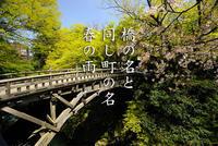 第6回山中温泉フォト575結果発表! - 酎ハイとわたし