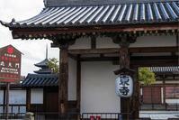 東寺~ - tabatabata