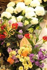 準備中! - 北赤羽花屋ソレイユの日々の花