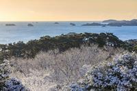 『松島COLORS』 - 嫁と息子と日常のなにげない風景と・・・。