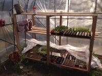 うちの小さな育苗センター - にじまる食堂 & にじまる農園